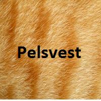 Pelsvest